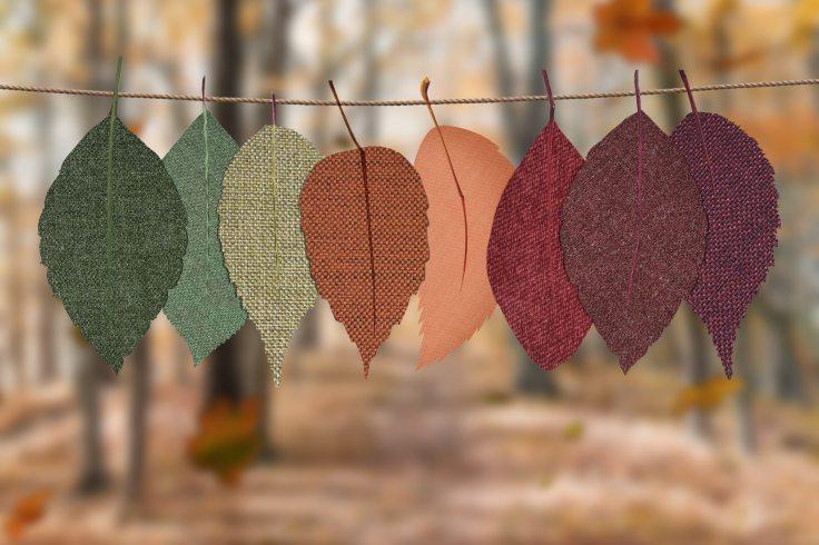 autumn-autumn-colors-autumn-colours-1389460